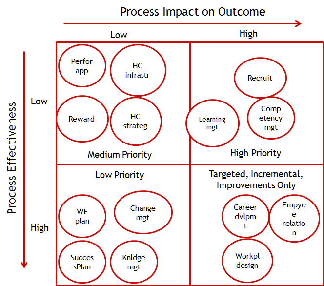 Figure 4: Using a policy matrix to select the next people process for improvement