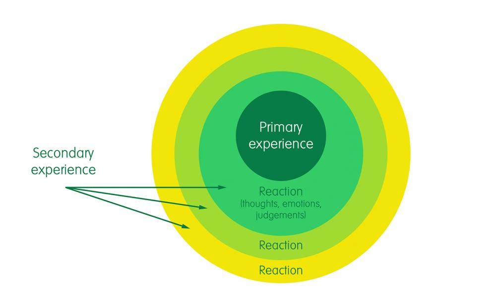 Primary and Secondary experiences