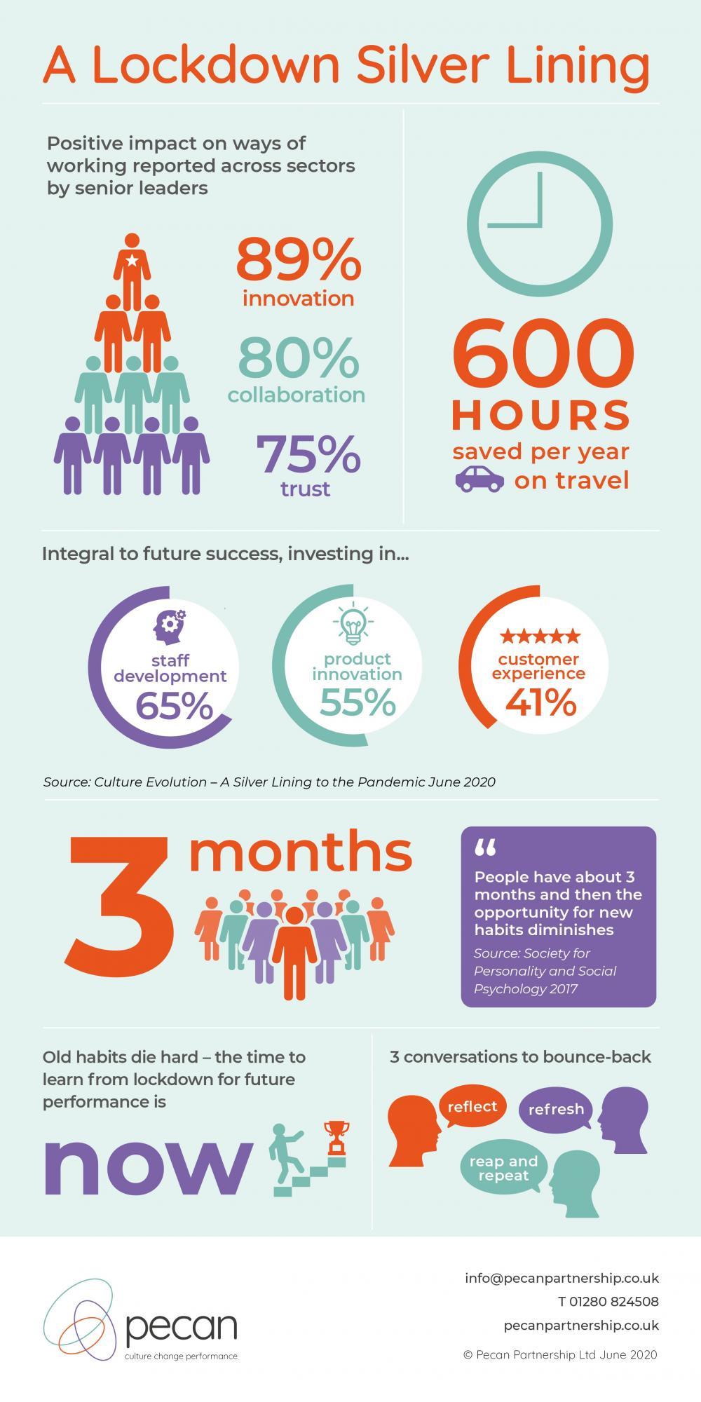 Pecan infographic