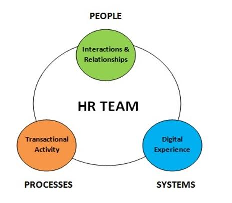 HR Team Theory