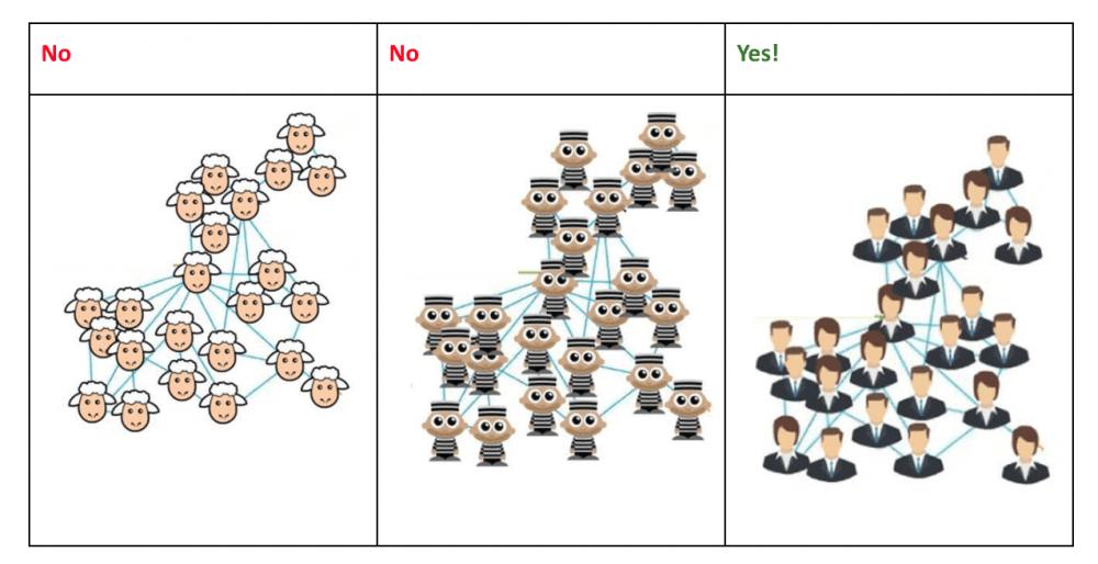 organisational_network_analysis