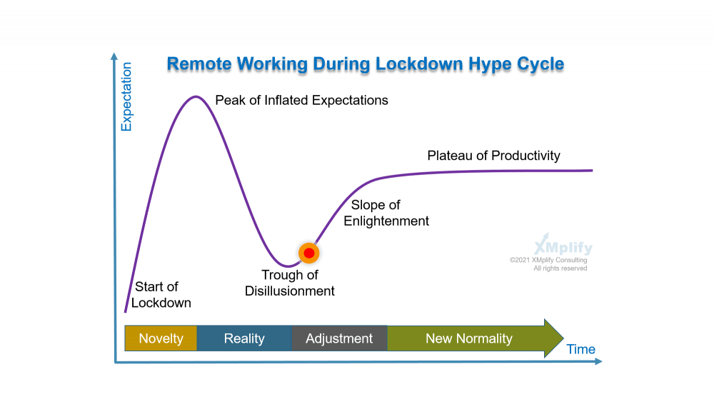 Remote Working Hype Cycle