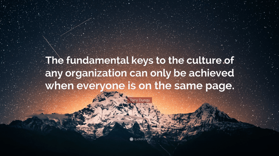 Organization Development, Talent Management, Strategy Focused Group
