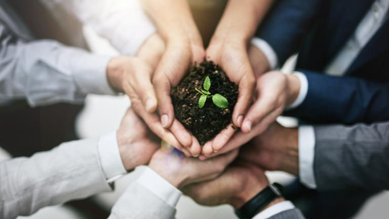 Generating growth by joining forces