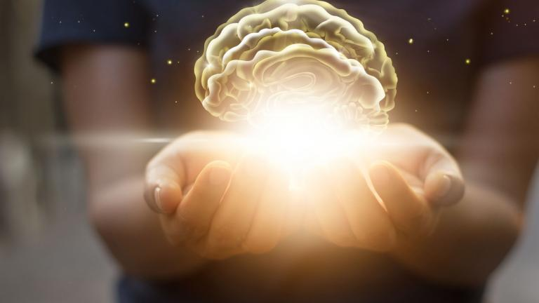 Protecting virtual brain in palm of hands