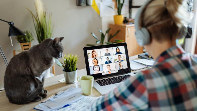 Woman working from home with pets