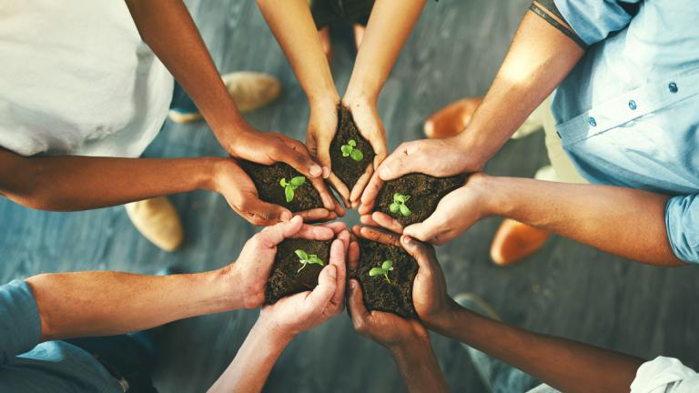 Closeup shot of a group of unrecognizable businesspeople holding plants growing out of soil