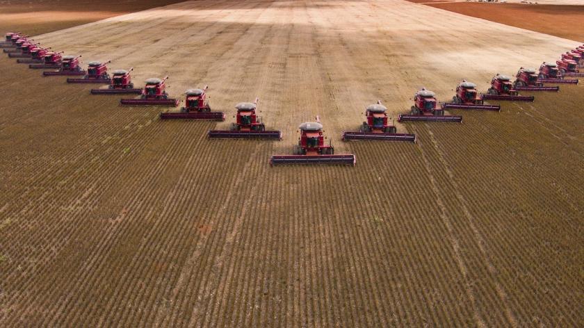 Soy bean harvest - productivity