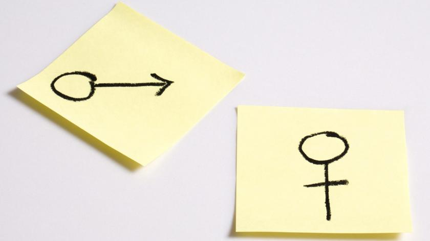 Gender workplace gap