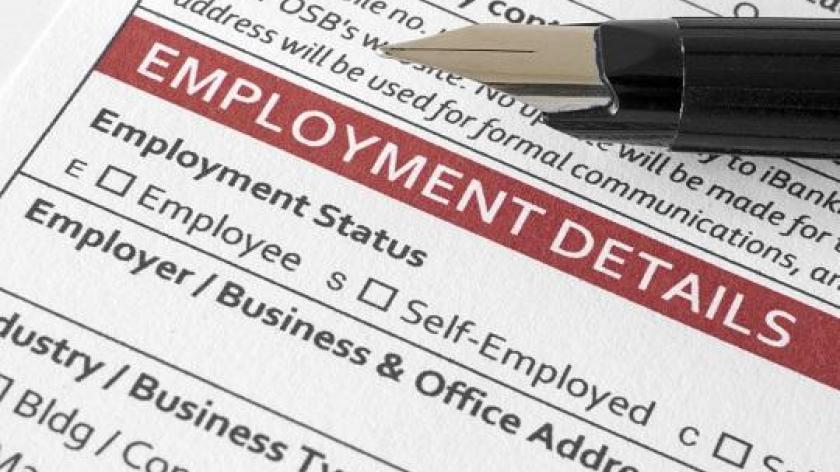 Who Am I  Types Of Employment Status