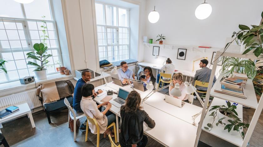 people working in a light, bright Scandinavian office