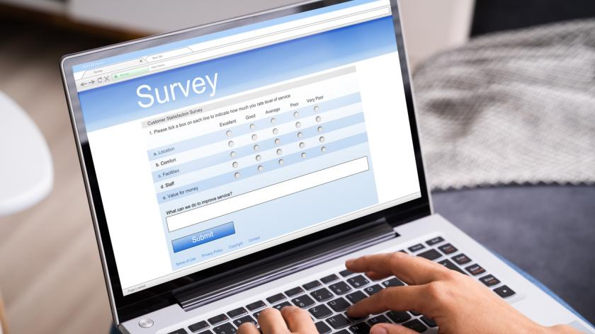 Woman Looking At Online Survey