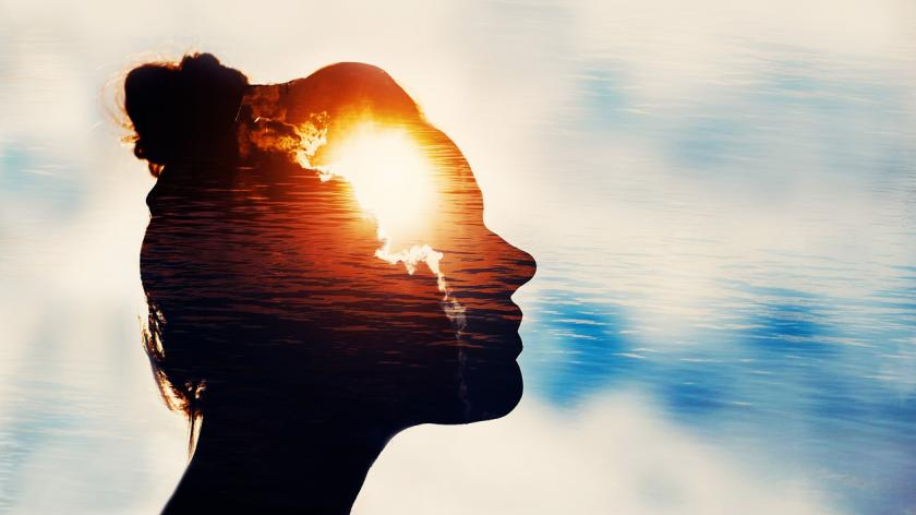 behavioural science image of woman's brain