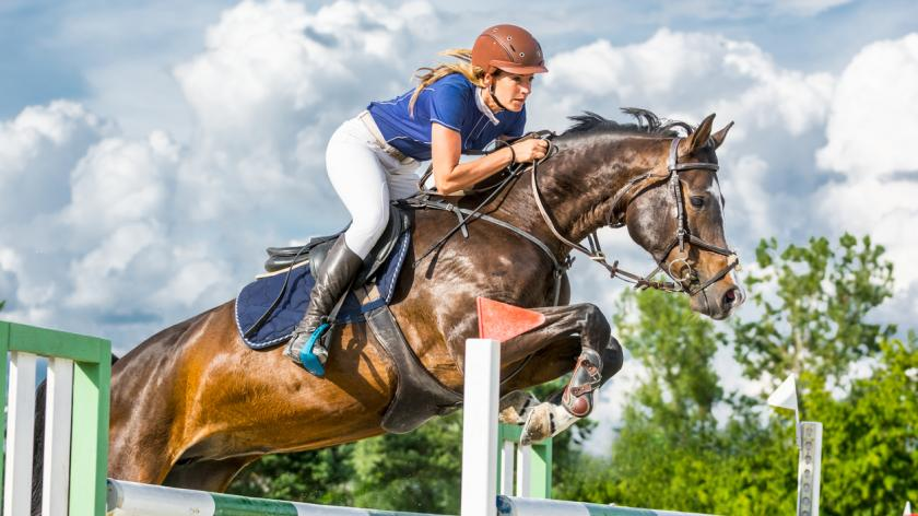 horse with female rider jumping over hurdle