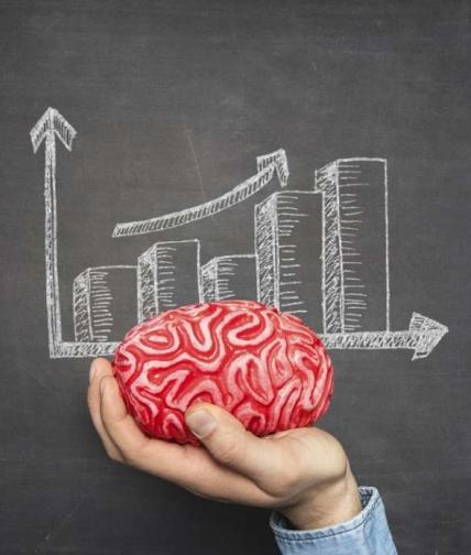Brain insight